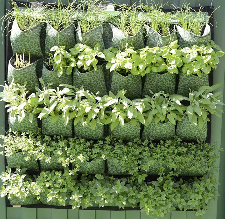 4 ideas de mejores modelos de jardines verticales caseros for Plantaciones verticales