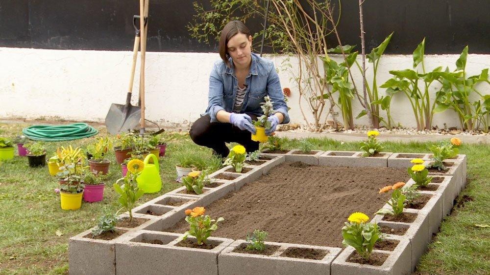 8 pasos para realmente saber como hacer un jard n zen - Como hacer un jardin bonito ...