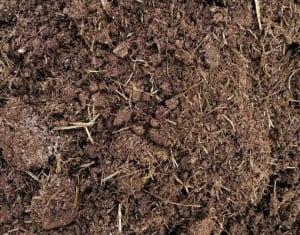 Razones para colocar La Tierra de Jardín La Plata