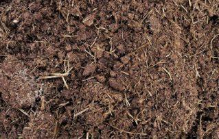 6 Razones de Porque La Tierra de Jardín La Plata y los Sustratos son lo Mejor para Profesionales de Jardinería