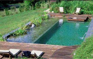 7 Beneficios de los Sistemas Ecológicos para Limpiar Aguas de Piscinas