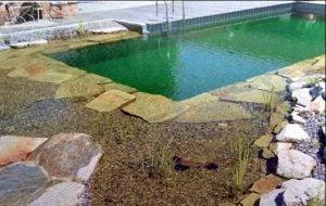 Beneficios de los Sistemas Ecológicos para Limpiar Aguas de Piscinas