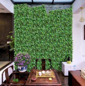 Plantas enredaderas en paredes